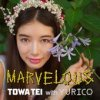 "Towa Tei with Yurico ""Marvelous"" (Download)"